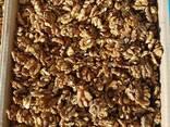 Продам орех грецкий оптом 1\2 бежевая. Цена на условиях FCA - фото 1